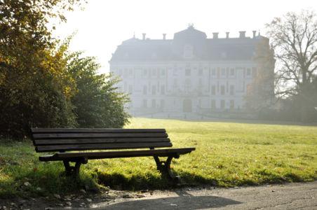 Pszczyna - zamek