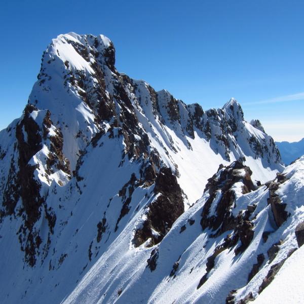 Alpy 2014
